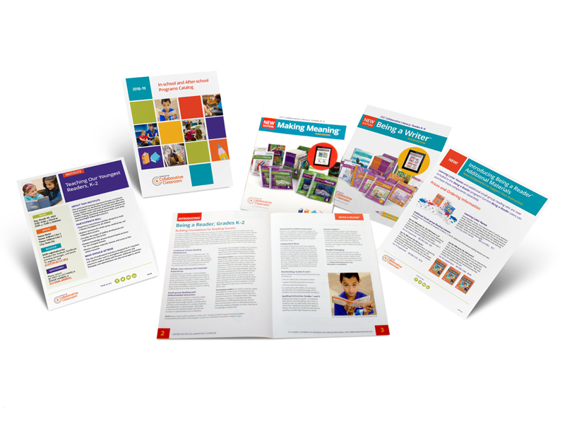marketing materials including flyer, catalog cover, catalog spread, and brochure covers